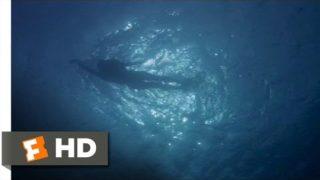 Jaws (1975) – Chrissie's Last Swim Scene (1/10) | Movieclips