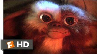 Gremlins (1/6) Movie CLIP – Billy Meets Gizmo (1984) HD