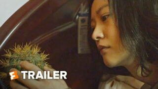 Spring Tide Trailer #1 (2020)   Movieclips Indie