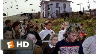 Crows Attack the Students – The Birds (6/11) Movie CLIP (1963) HD